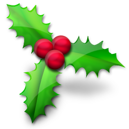 vistaico_christmas-png-christmas-holly-256x256